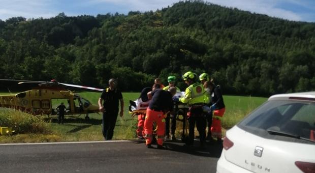 Il motociclista ferito dopo l'urto con un capriolo