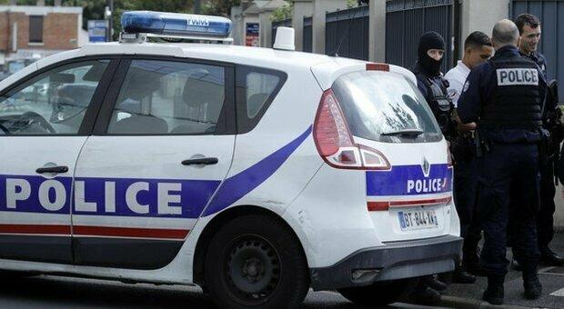 Rubano un cane e lo gettano dalla finestra: 3 ragazzine rischiano sino a 30.000 euro di multa