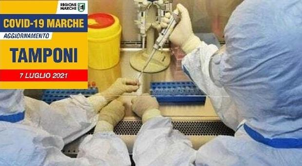 Coronavirus, i nuovi positivi delle Marche salgono a 52: allrme per la zona bianca