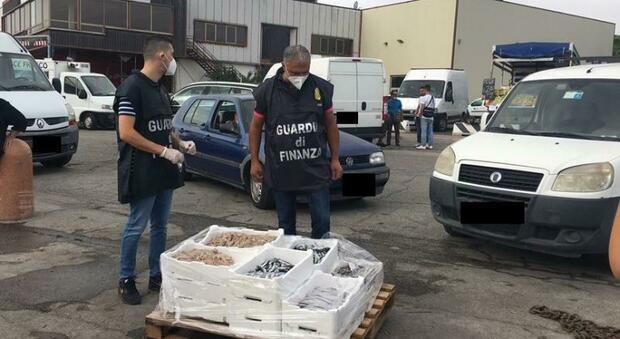 Niente autorizzazioni e scarsa igiene: maxi sequestri multe a tre zeri al mercato del pesce sul molo