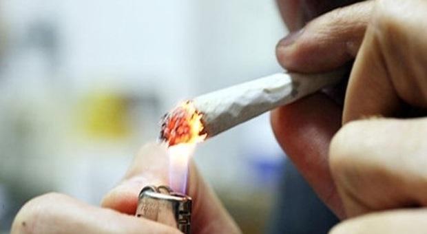 Montecarotto, marijuana in tasca: segnalato come consumatore a 61 anni