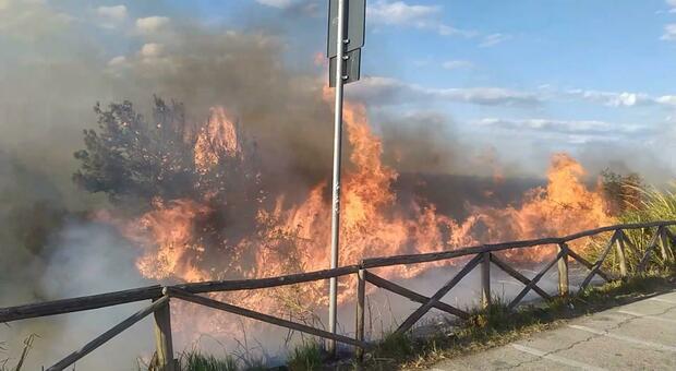 Incendio a Portonovo, ora spunta l ipotesi del dolo: indagini ancora in corso