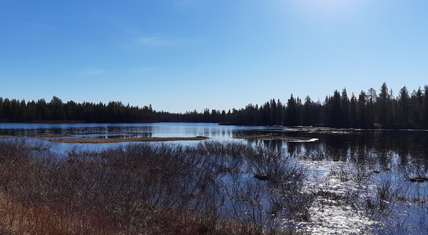 Lapponia Finlandese Ruka Kuusamo