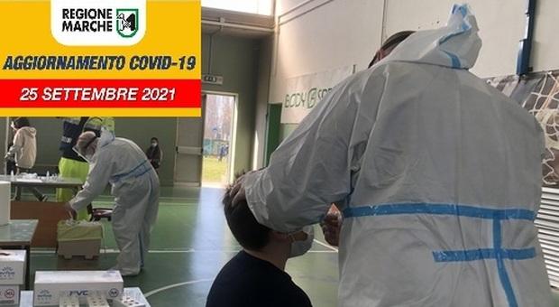 I tamponi per verificare la positività al Coronavirus