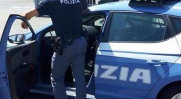 Livorno choc, uccide un gatto e lo cucina in strada: arrestato 21enne straniero