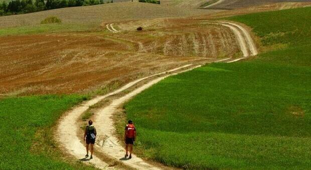 Vacanze estive 2021, in molti hanno già prenotato e tra le mete più scelte spunta Viterbo