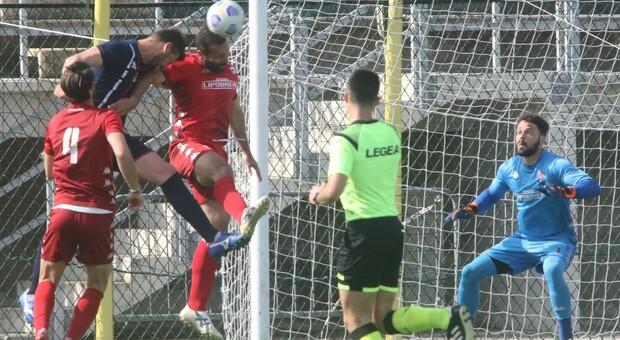 L'Anconitana si gioca tutto, il derby Atletico Ascoli-Porto d'Ascoli vale un tesoro