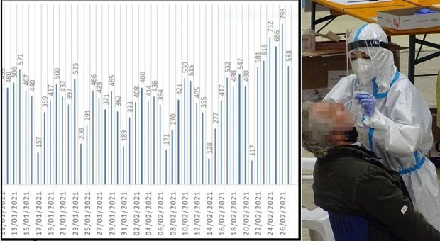 Coronavirus, crollano i tamponi ma i nuovi positivi nelle Marche sono 446: più di metà nell'Anconetano