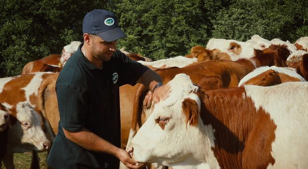 Gli allevatori snobbano il latte e la produzione segna il passo: 7% in meno rispetto allo scorso anno