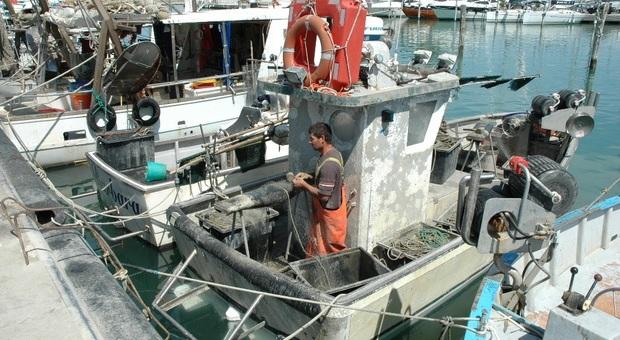 Fano, in arrivo maxi cartelle Inps: i piccoli pescatori insorgono