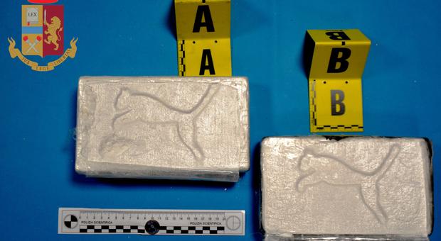 La cocaina sequestrata dalla polizia