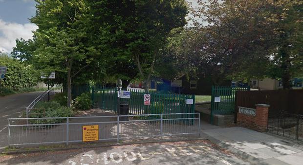 Bambina muore schiacciata da un albero nel cortile della scuola, choc tra i compagni