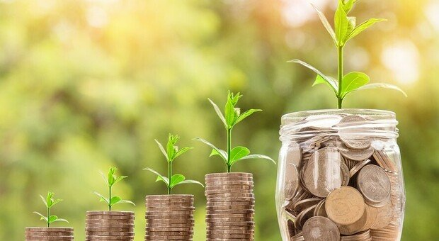 La pensione di scorta chiede meno Fisco: ecco i nuovi progetti