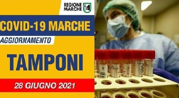 Coronavirus, nuovi positivi soltanto in due province: sono 3 nelle Marche nelle ultime 24 ore/ Il trend dei contagi