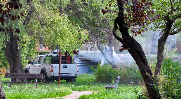 Febbre del Nilo, quarta vittima in Veneto: l'emergenza non si ferma