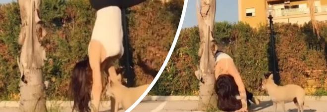 Naike Rivelli, la verticale fa flop e il cane si spaventa: le immagini