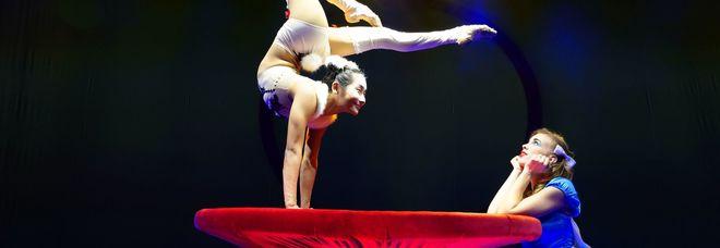 &ldquoAlis Christmas Gala&rdquoLe Cirque ad AnconaPrevendita da domani